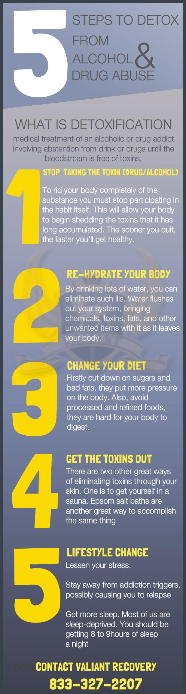 5 Steps to Detox from Drugs or Alcohol -  InfoGraphic