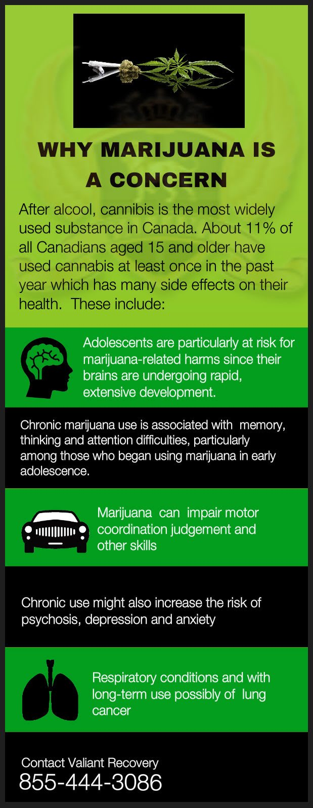 Why Marijuana is a Concern in Canada - infographic