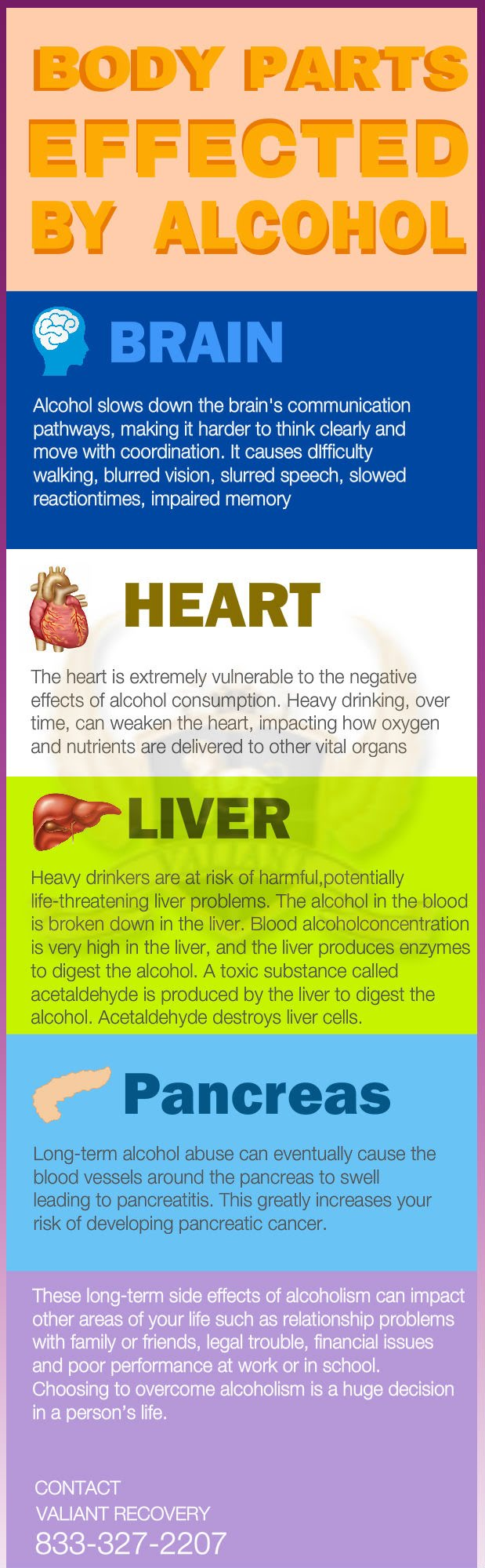 Body Parts Effected by Alcohol