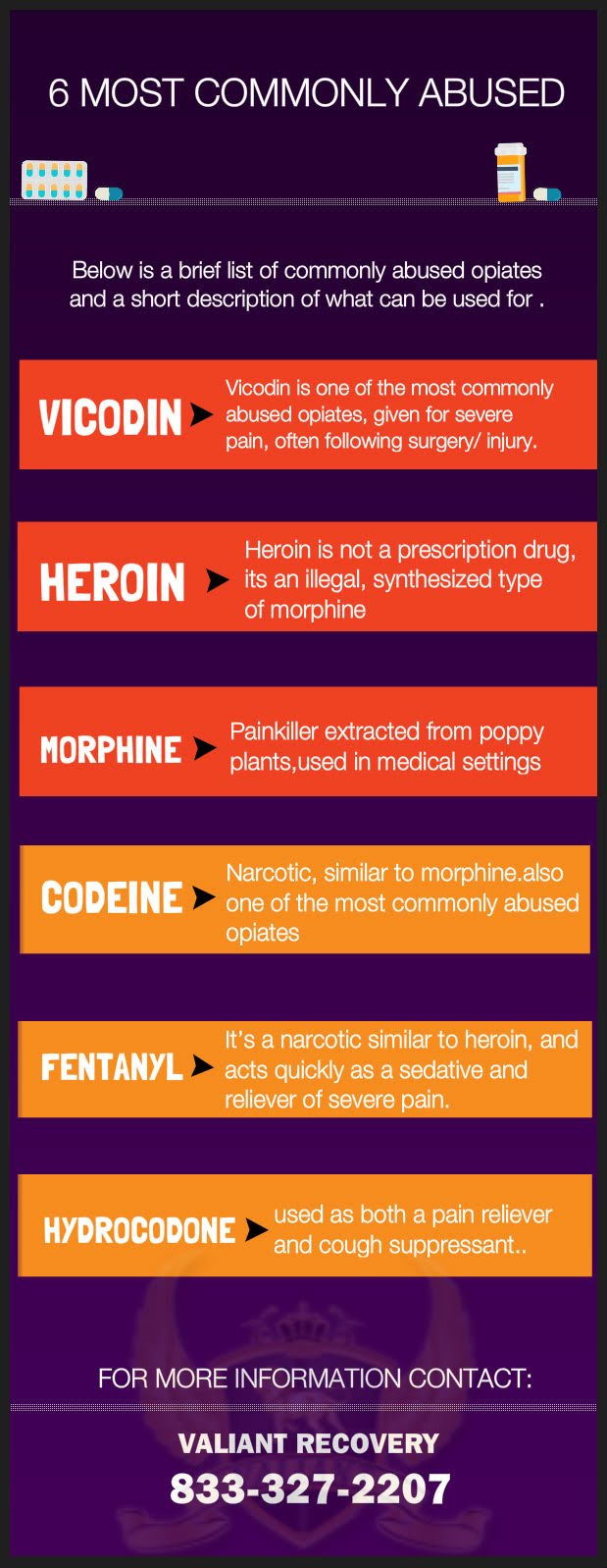 6 of the most commonly abused opiates - infographic