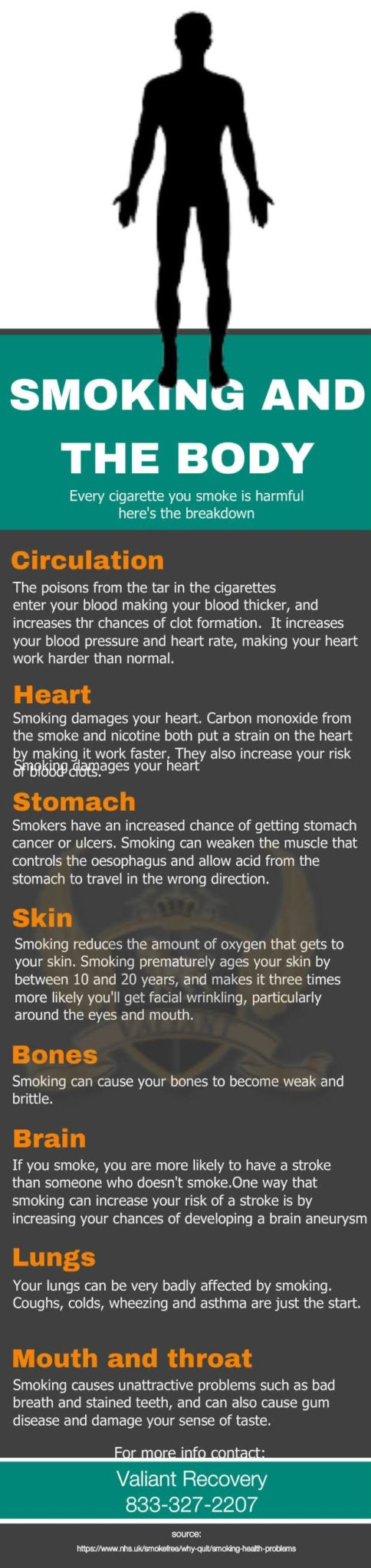 Smoking and The Effects Body - Infographic